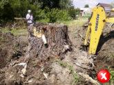 Преимущество ГНБ - не нужно вырубать деревья и кусты